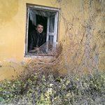Adnan Žetica: Autentična povijest kućnog broja 198 (izbor)